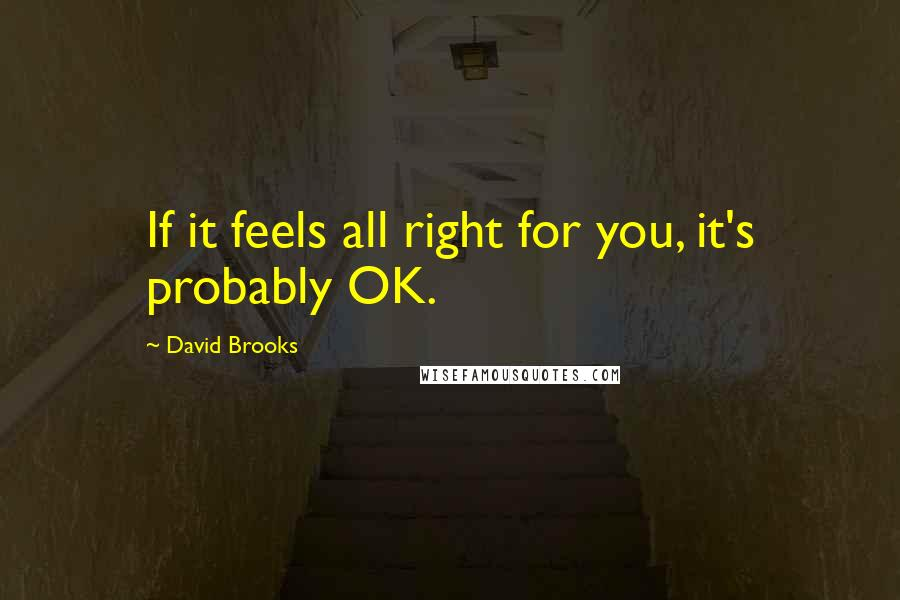 David Brooks quotes: If it feels all right for you, it's probably OK.