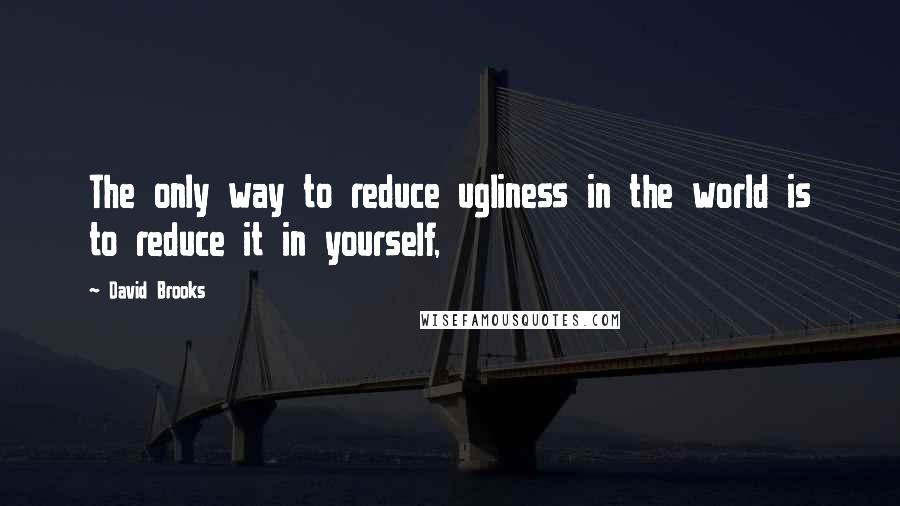David Brooks quotes: The only way to reduce ugliness in the world is to reduce it in yourself,