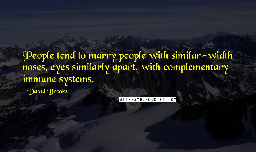 David Brooks quotes: People tend to marry people with similar-width noses, eyes similarly apart, with complementary immune systems.