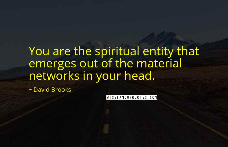 David Brooks quotes: You are the spiritual entity that emerges out of the material networks in your head.