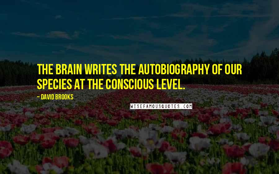 David Brooks quotes: The brain writes the autobiography of our species at the conscious level.