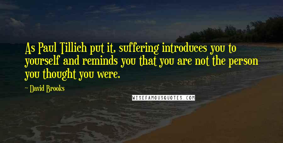 David Brooks quotes: As Paul Tillich put it, suffering introduces you to yourself and reminds you that you are not the person you thought you were.