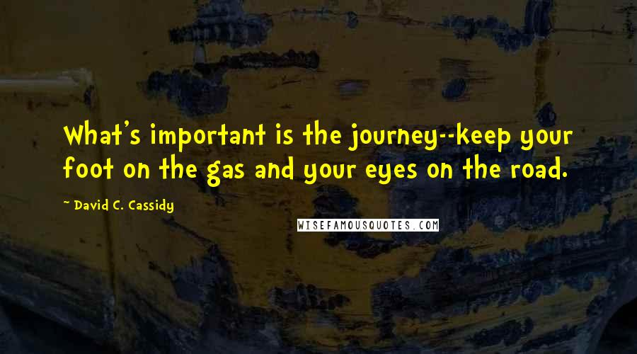 David C. Cassidy quotes: What's important is the journey--keep your foot on the gas and your eyes on the road.