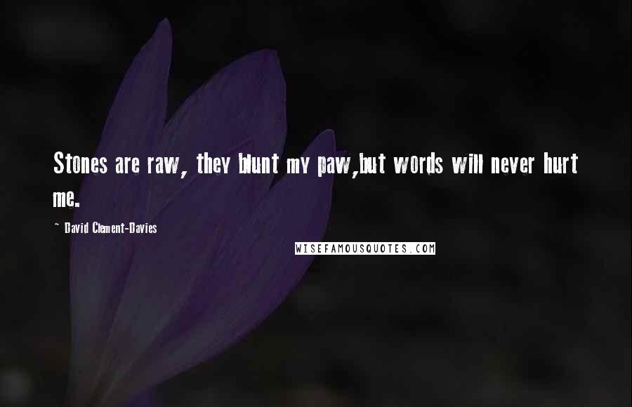 David Clement-Davies quotes: Stones are raw, they blunt my paw,but words will never hurt me.
