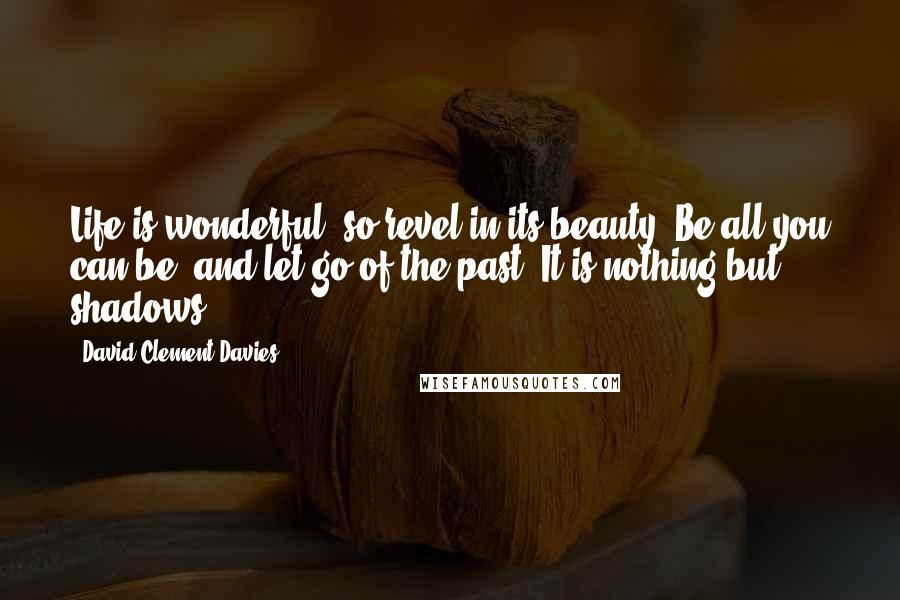 David Clement-Davies quotes: Life is wonderful, so revel in its beauty. Be all you can be, and let go of the past. It is nothing but shadows.