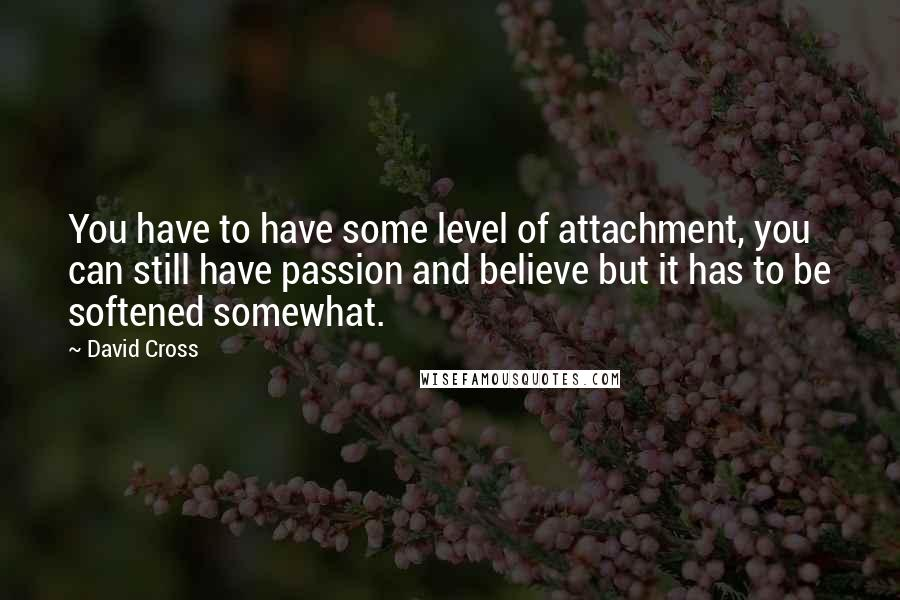 David Cross quotes: You have to have some level of attachment, you can still have passion and believe but it has to be softened somewhat.