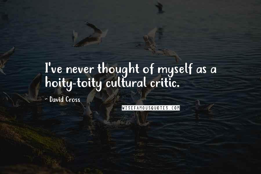 David Cross quotes: I've never thought of myself as a hoity-toity cultural critic.