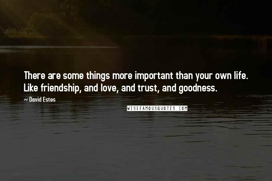 David Estes quotes: There are some things more important than your own life. Like friendship, and love, and trust, and goodness.