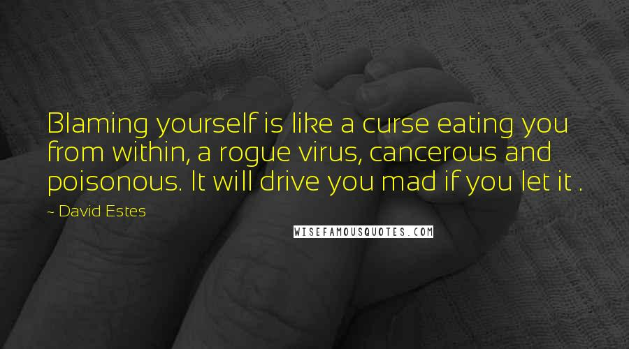 David Estes quotes: Blaming yourself is like a curse eating you from within, a rogue virus, cancerous and poisonous. It will drive you mad if you let it .