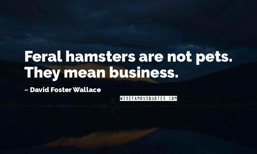 David Foster Wallace quotes: Feral hamsters are not pets. They mean business.