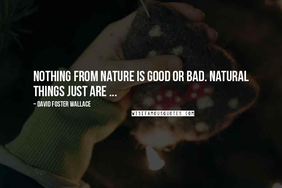 David Foster Wallace quotes: Nothing from nature is good or bad. Natural things just are ...