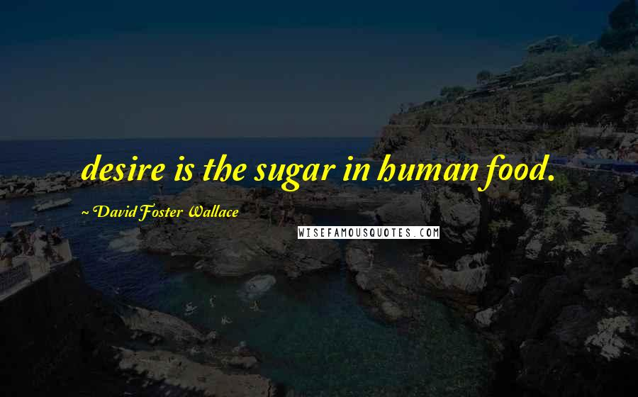 David Foster Wallace quotes: desire is the sugar in human food.