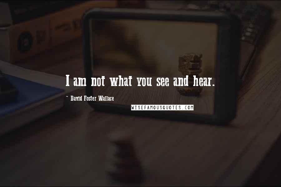 David Foster Wallace quotes: I am not what you see and hear.