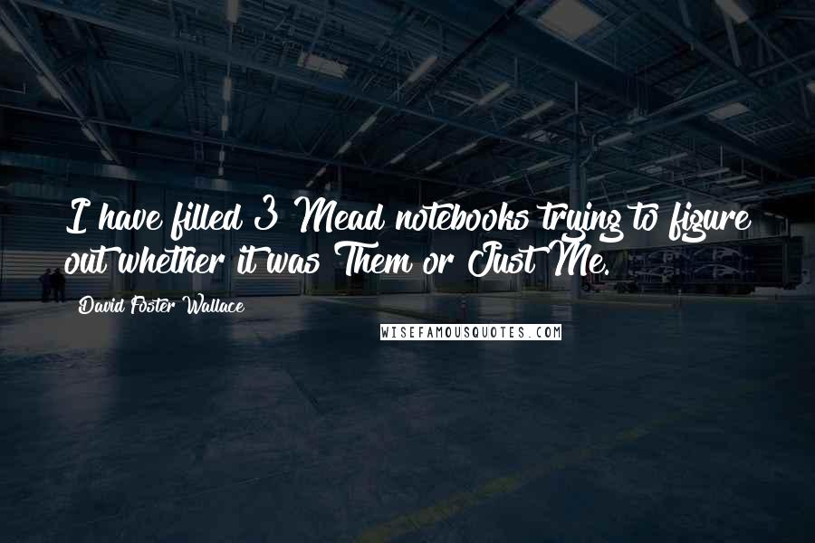 David Foster Wallace quotes: I have filled 3 Mead notebooks trying to figure out whether it was Them or Just Me.