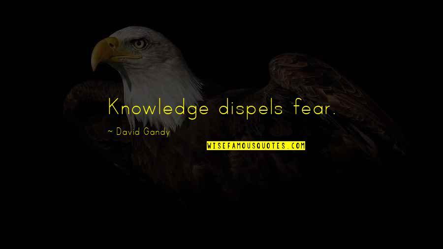 David Gandy Quotes By David Gandy: Knowledge dispels fear.