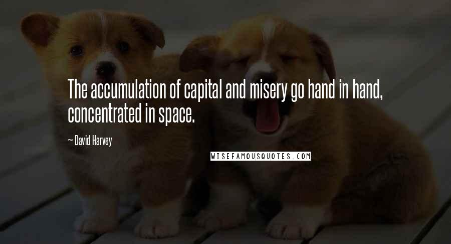 David Harvey quotes: The accumulation of capital and misery go hand in hand, concentrated in space.