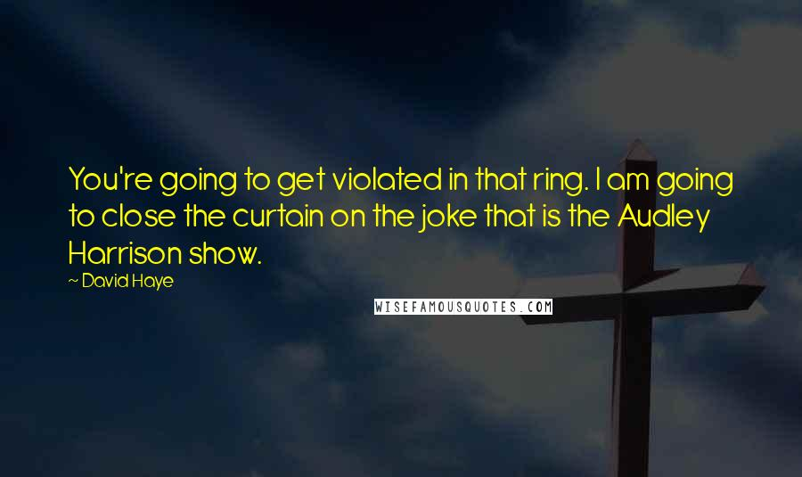 David Haye quotes: You're going to get violated in that ring. I am going to close the curtain on the joke that is the Audley Harrison show.