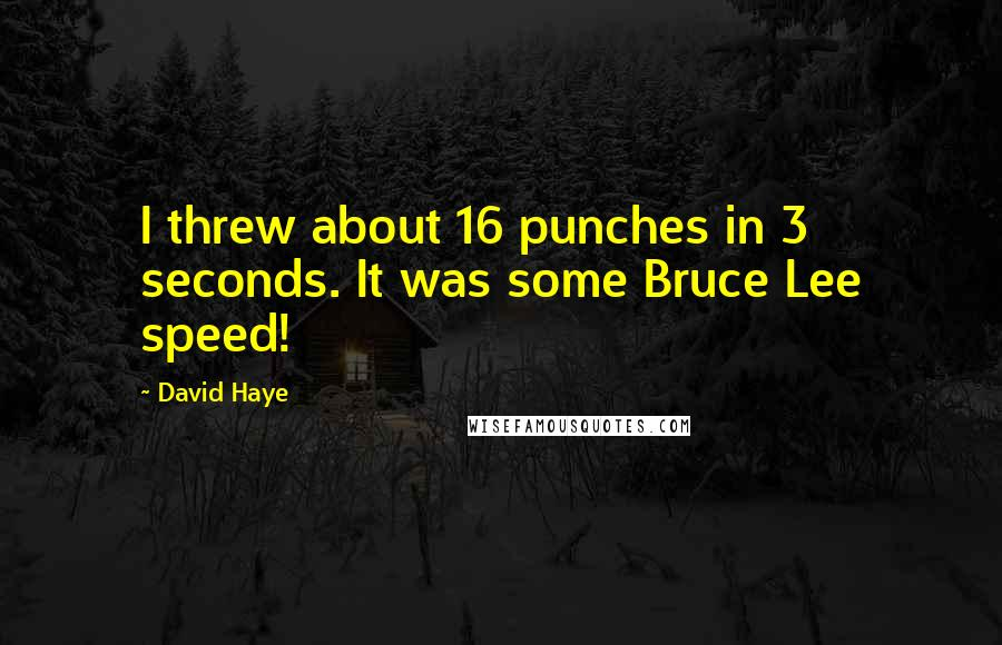 David Haye quotes: I threw about 16 punches in 3 seconds. It was some Bruce Lee speed!