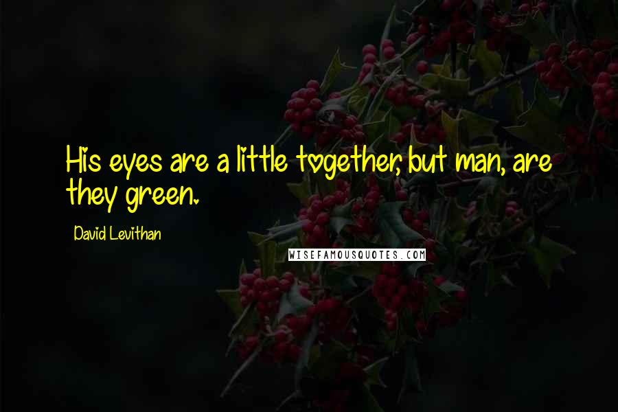 David Levithan quotes: His eyes are a little together, but man, are they green.