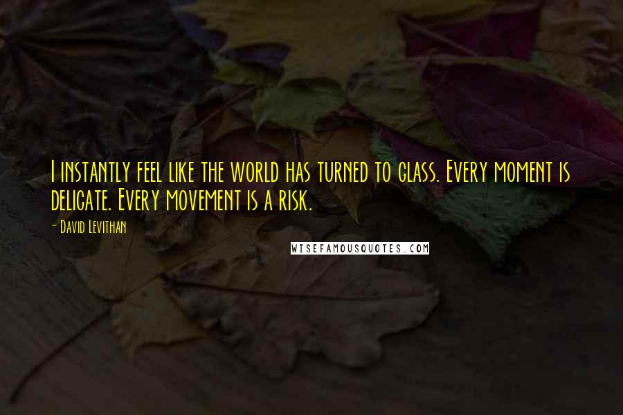 David Levithan quotes: I instantly feel like the world has turned to glass. Every moment is delicate. Every movement is a risk.