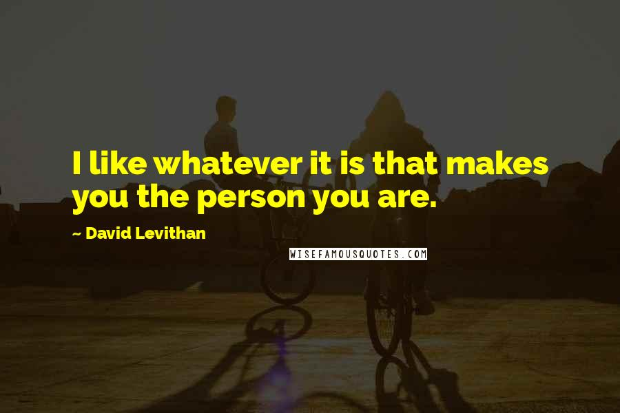 David Levithan quotes: I like whatever it is that makes you the person you are.