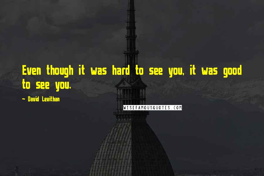 David Levithan quotes: Even though it was hard to see you, it was good to see you.