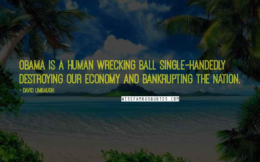 David Limbaugh quotes: Obama is a human wrecking ball single-handedly destroying our economy and bankrupting the nation.