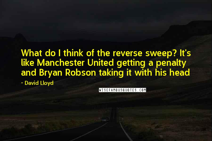 David Lloyd quotes: What do I think of the reverse sweep? It's like Manchester United getting a penalty and Bryan Robson taking it with his head