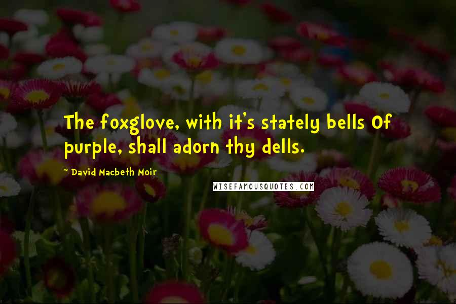 David Macbeth Moir quotes: The foxglove, with it's stately bells Of purple, shall adorn thy dells.