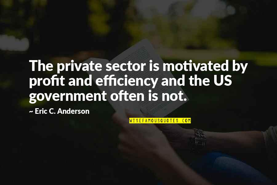 David Maister Quotes By Eric C. Anderson: The private sector is motivated by profit and