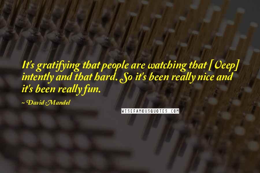 David Mandel quotes: It's gratifying that people are watching that [Veep] intently and that hard. So it's been really nice and it's been really fun.