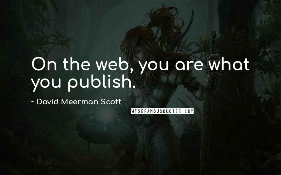 David Meerman Scott quotes: On the web, you are what you publish.