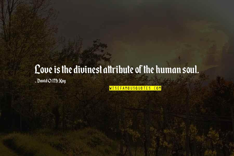 David O'leary Quotes By David O. McKay: Love is the divinest attribute of the human