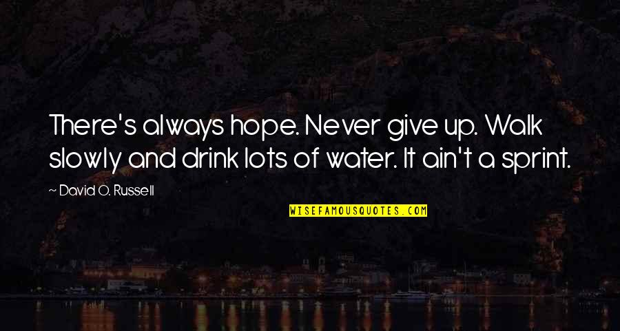 David O'leary Quotes By David O. Russell: There's always hope. Never give up. Walk slowly