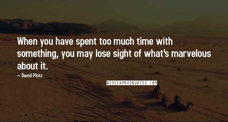 David Plotz quotes: When you have spent too much time with something, you may lose sight of what's marvelous about it.