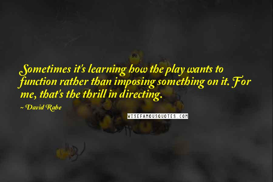David Rabe quotes: Sometimes it's learning how the play wants to function rather than imposing something on it. For me, that's the thrill in directing.