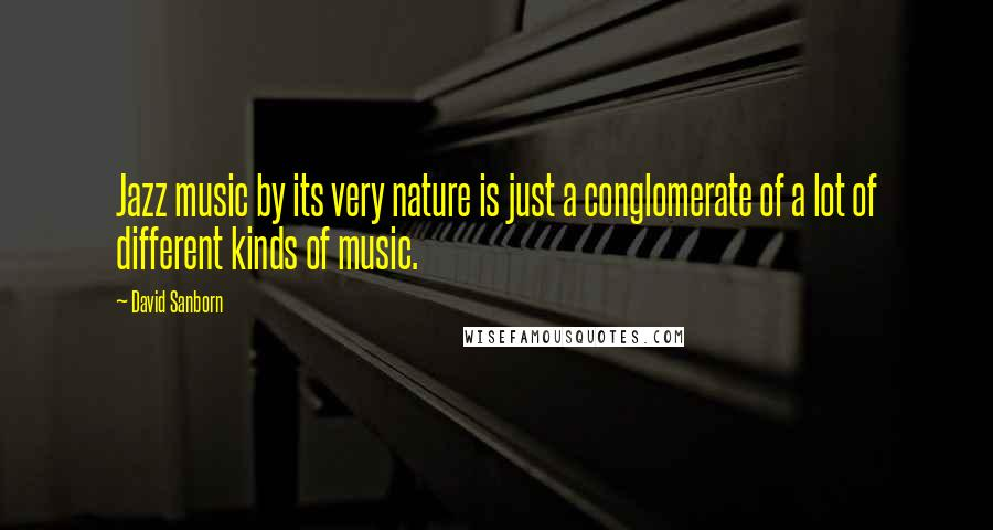 David Sanborn quotes: Jazz music by its very nature is just a conglomerate of a lot of different kinds of music.