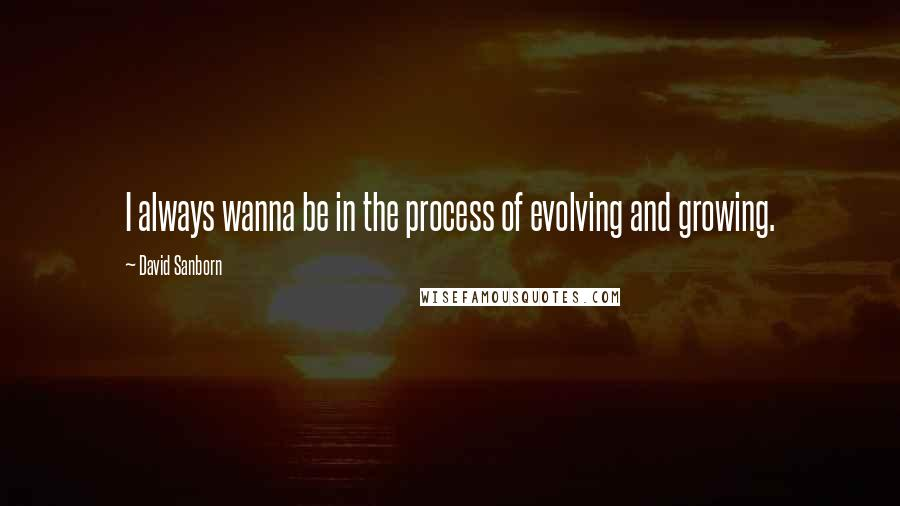 David Sanborn quotes: I always wanna be in the process of evolving and growing.