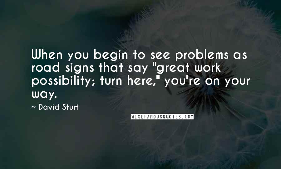 "David Sturt quotes: When you begin to see problems as road signs that say ""great work possibility; turn here,"" you're on your way."