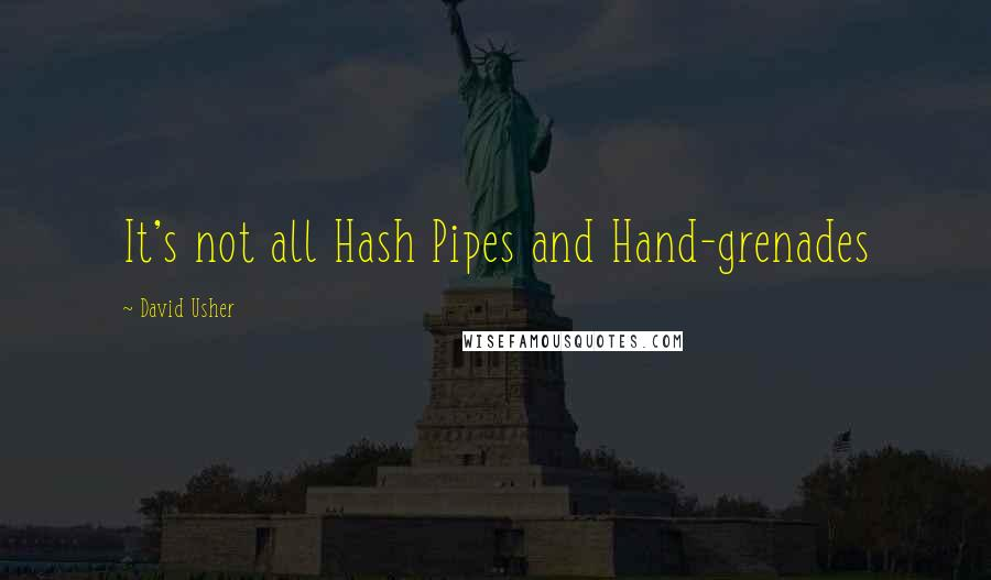 David Usher quotes: It's not all Hash Pipes and Hand-grenades