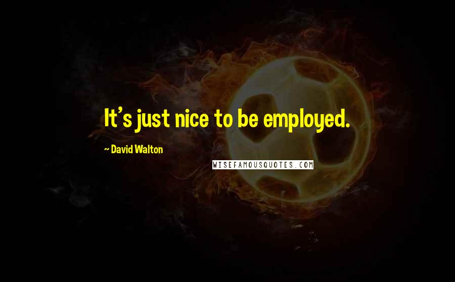 David Walton quotes: It's just nice to be employed.