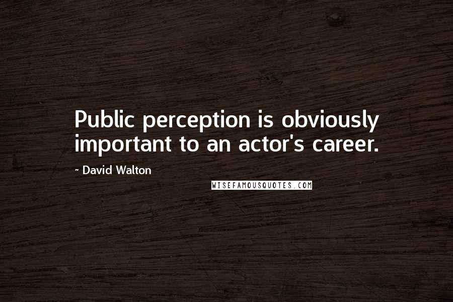 David Walton quotes: Public perception is obviously important to an actor's career.