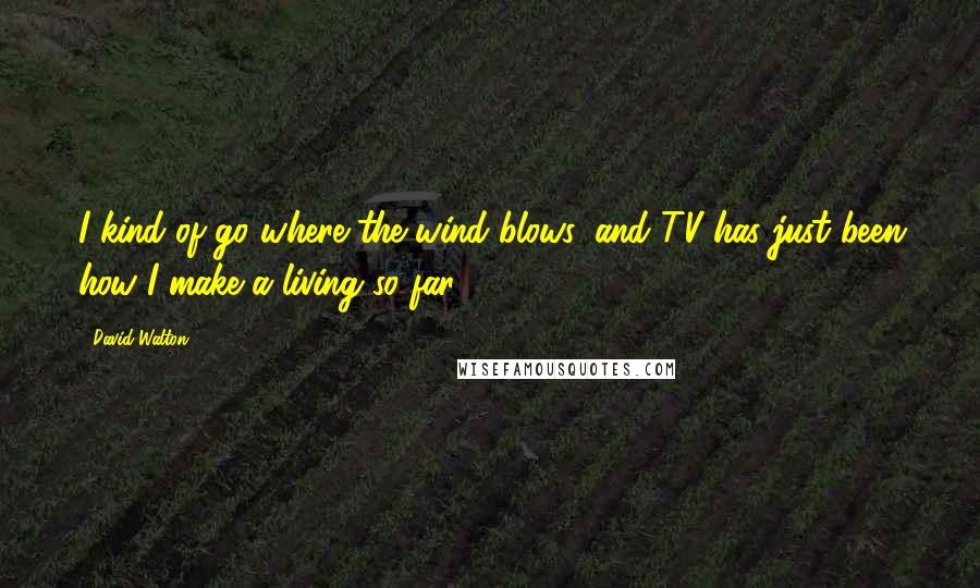 David Walton quotes: I kind of go where the wind blows, and TV has just been how I make a living so far.