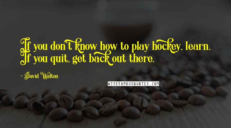 David Walton quotes: If you don't know how to play hockey, learn. If you quit, get back out there.
