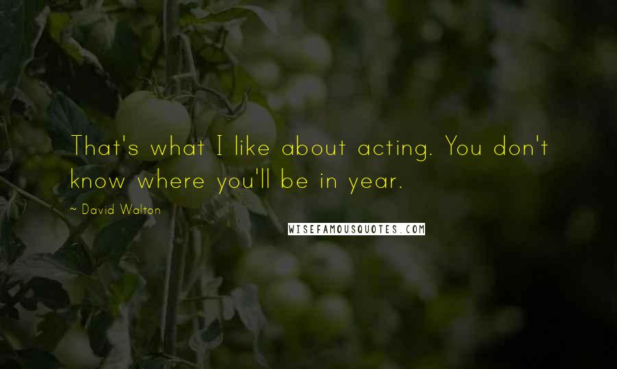 David Walton quotes: That's what I like about acting. You don't know where you'll be in year.