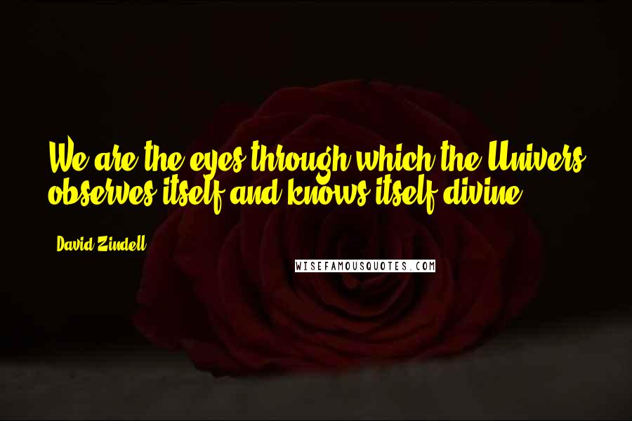 David Zindell quotes: We are the eyes through which the Univers observes itself and knows itself divine.