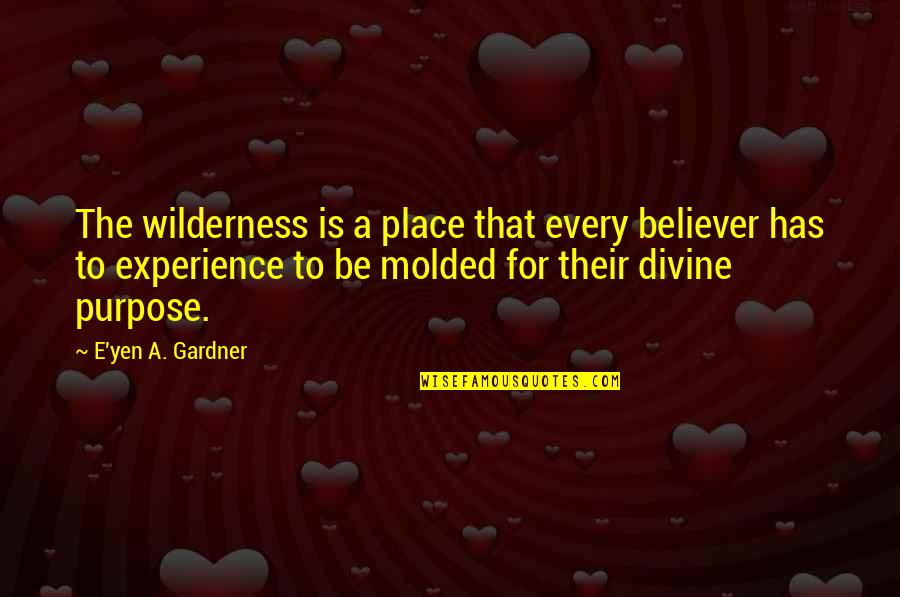 Davutoglu Quotes By E'yen A. Gardner: The wilderness is a place that every believer