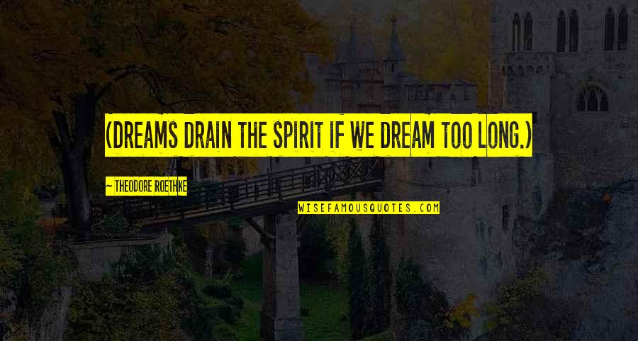 Daydreaming Quotes By Theodore Roethke: (Dreams drain the spirit if we dream too