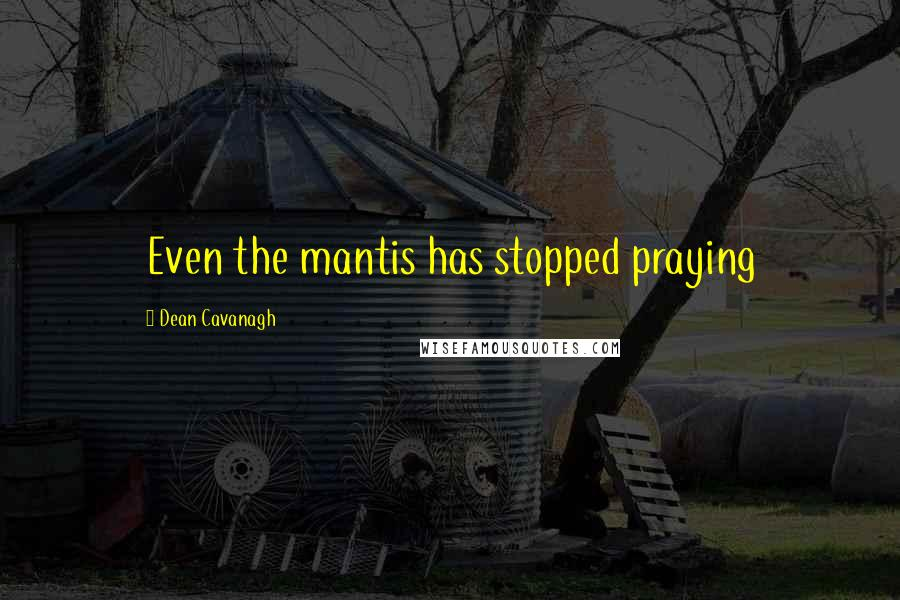 Dean Cavanagh quotes: Even the mantis has stopped praying