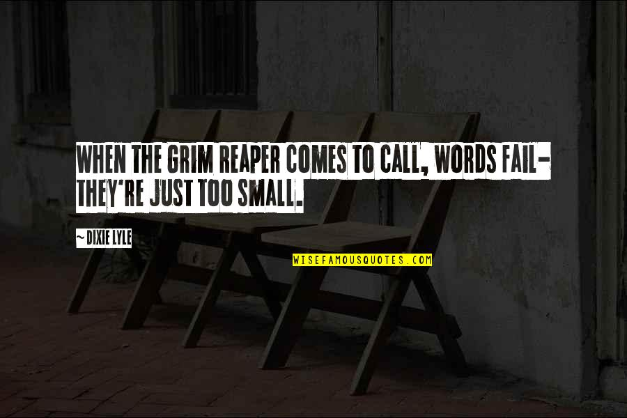 Death And The Grim Reaper Quotes By Dixie Lyle: When the Grim Reaper comes to call, words